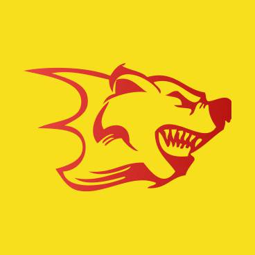 Логотип проекта haJS